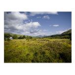 Highland Landscape Postcard