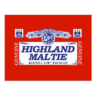 Highland Maltie Postcard