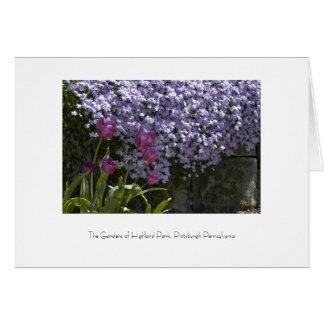 Highland Park Garden Greeting Card