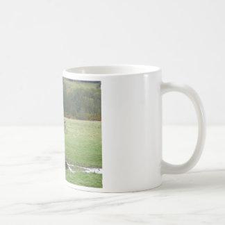 Highland pony and raven coffee mug
