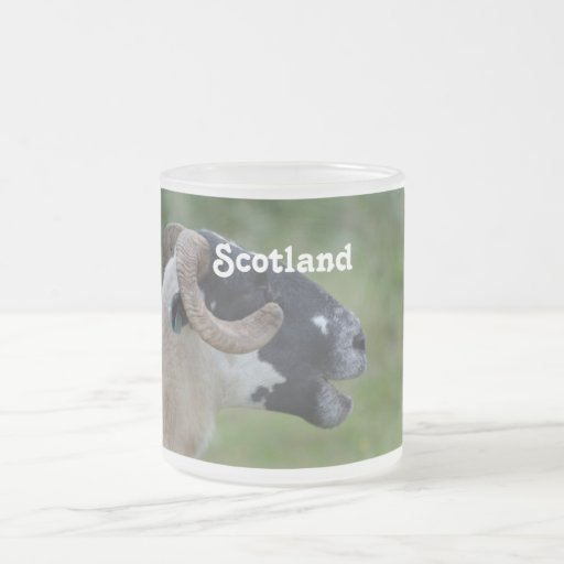 Highland Sheep 10 Oz Frosted Glass Coffee Mug