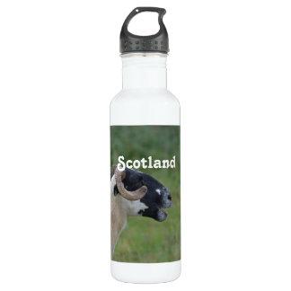 Highland Sheep 24oz Water Bottle