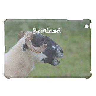 Highland Sheep iPad Mini Covers