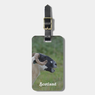 Highland Sheep Tags For Luggage