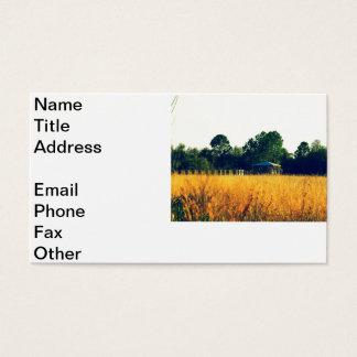 Highlands Hammock Business Card