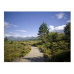 Highlands • Postcard