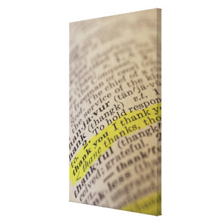 Highlighted dictionary entry canvas print