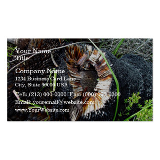 Highly flammable blackboy stump business card templates