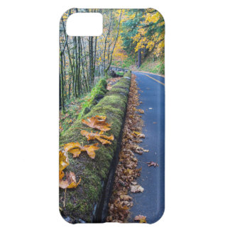 Highway 30 Winds Through The Columbia River iPhone 5C Case