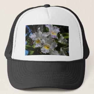 Highwire Love Trucker Hat