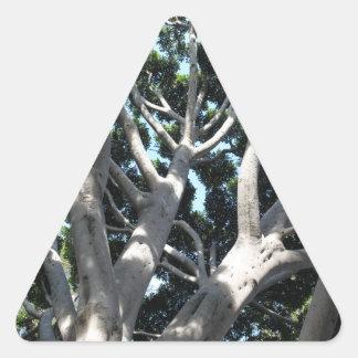 Higuera vieja pegatina triangular