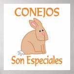Hijo Especiales de Conejos Posters