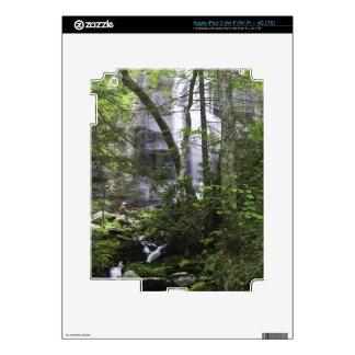 Hiker admires Falls Branch Falls Decals For iPad 3