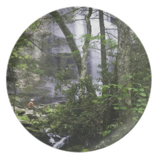 Hiker admires Falls Branch Falls Dinner Plate