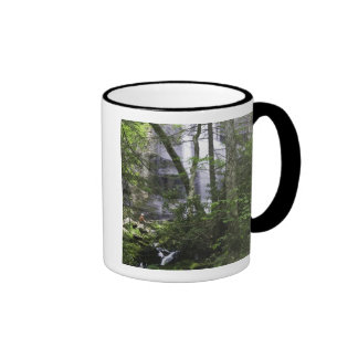 Hiker admires Falls Branch Falls Mugs