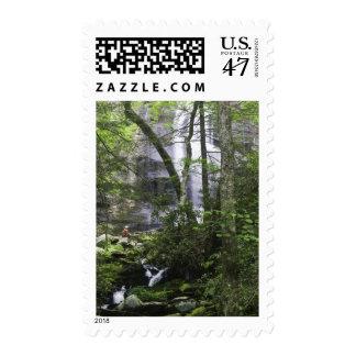 Hiker admires Falls Branch Falls Stamp