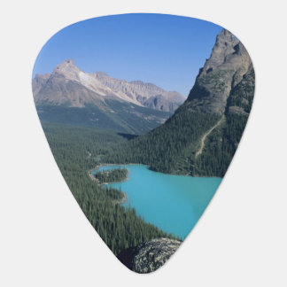 Hiker overlooking turquoise-colored Lake Guitar Pick