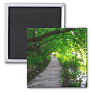 Hiking Path in Plitvice National Park in Croatia Magnet
