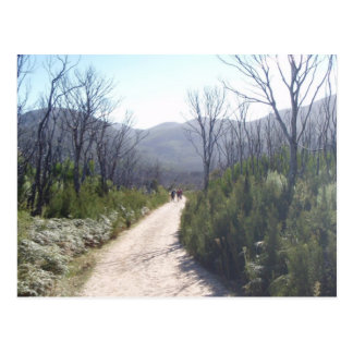 Hiking Postcard