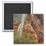 Hiking The Emerald Pools Trail in Zion National Refrigerator Magnet