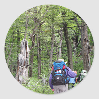 Hiking through trees, Torres del Paine Park, Chile Classic Round Sticker