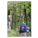Hiking through trees, Torres del Paine Park, Chile Dry Erase Board