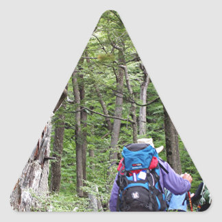 Hiking through trees, Torres del Paine Park, Chile Triangle Sticker