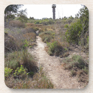 Hiking Trail at Andree Clark Bird Refuge Beverage Coaster