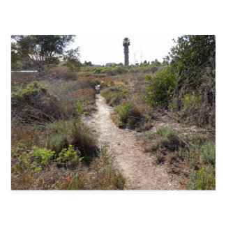 Hiking Trail at Andree Clark Bird Refuge Postcard
