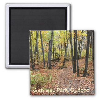 Hiking Trail in Autumn Gatineau Park Quebec Refrigerator Magnets