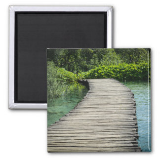 Hiking Trail in Plitvice National Park in Croatia Magnet