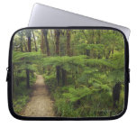 Hiking trail in rainforest with fern trees - laptop computer sleeves