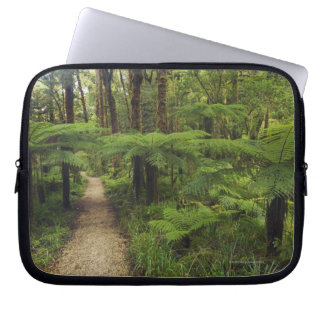 Hiking trail in rainforest with fern trees - laptop sleeve