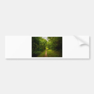 Hiking trail through the woods bumper sticker