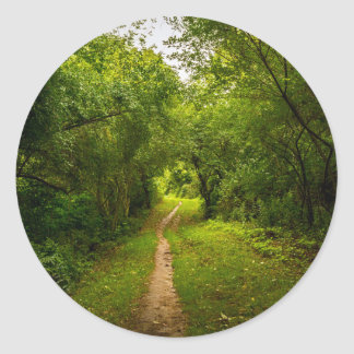 Hiking trail through the woods classic round sticker