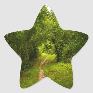 Hiking trail through the woods star sticker