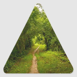 Hiking trail through the woods triangle sticker