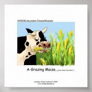 """Hilarious Cow Framed Print """"A-Grazin' Maize"""""""