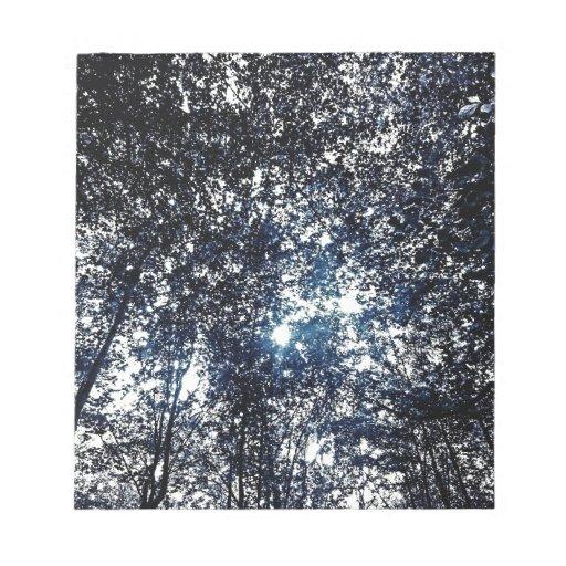 Hilera de árboles azul libretas para notas