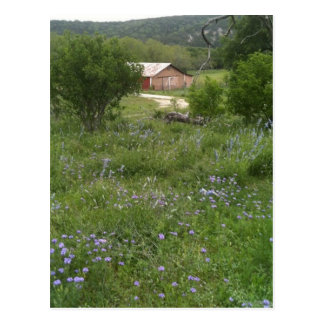 Hill Country Postcard