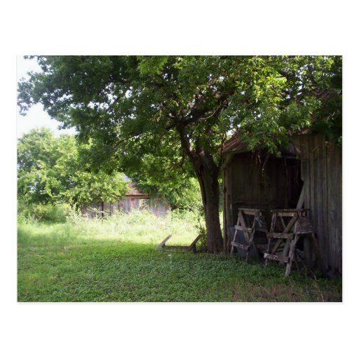 Hill Country Sunshine Post Card