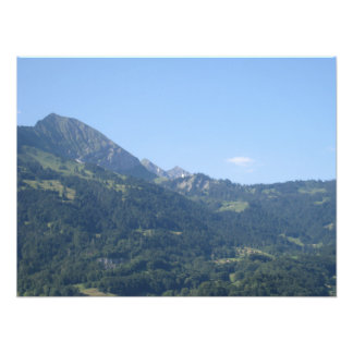Hill covered with greenery photo print