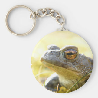 Hill End Toad Keychains