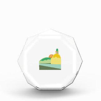 Hill Landscape Award