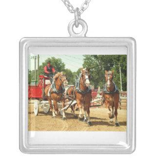 Hillsboro Ohio draft horse show 2010 Custom Jewelry