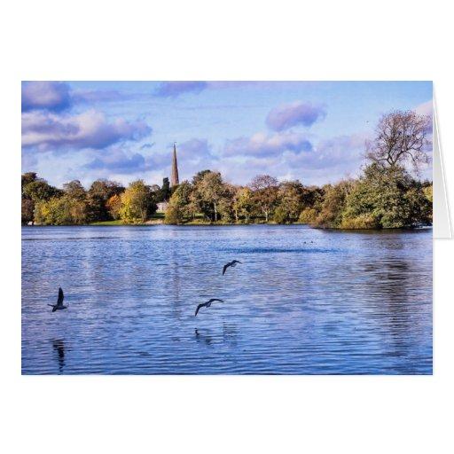 Hillsborough Forest Park Greeting Cards