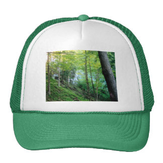 Hillside Forest Trucker Hat