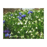 Hillside of Early Spring Flowers I Canvas Print