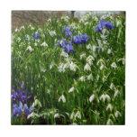Hillside of Early Spring Flowers I Tile
