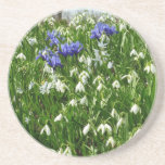 Hillside of Early Spring Flowers Landscape Coaster